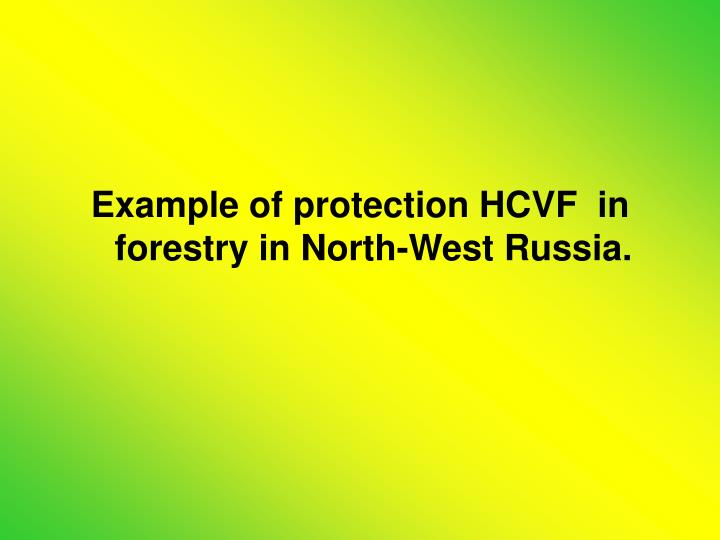Example of protection HCVF  in forestry in North-West Russia