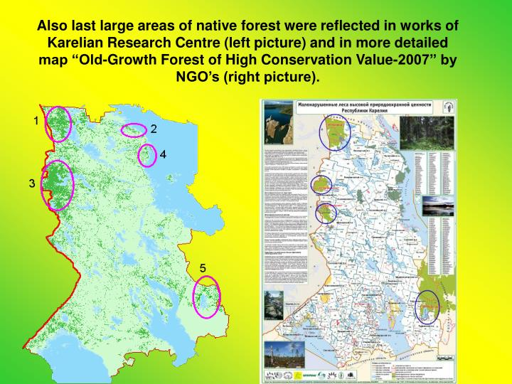 "Also last large areas of native forest were reflected in works of Karelian Research Centre (left picture) and in more detailed map ""Old-Growth Forest of High Conservation Value-2007"" by NGO's (right picture)."