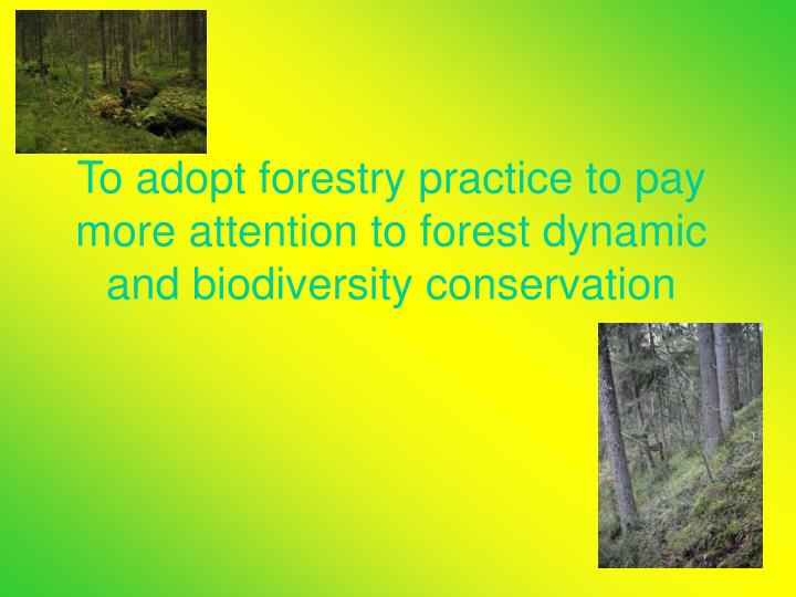 To adopt forestry practice to pay more attention to forest dynamic and biodiversity conservation