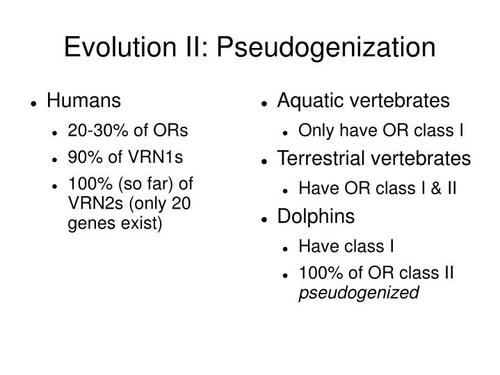 Aquatic vertebrates