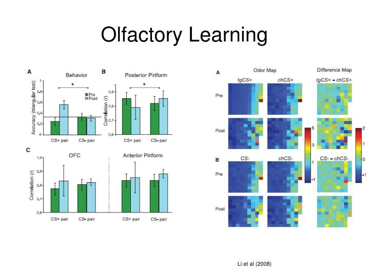 Olfactory Learning