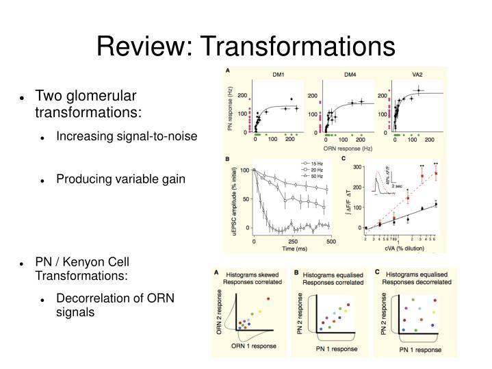 Review: Transformations