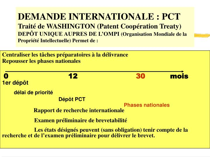DEMANDE INTERNATIONALE : PCT