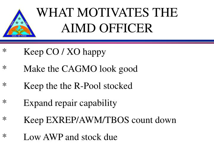 WHAT MOTIVATES THE AIMD OFFICER