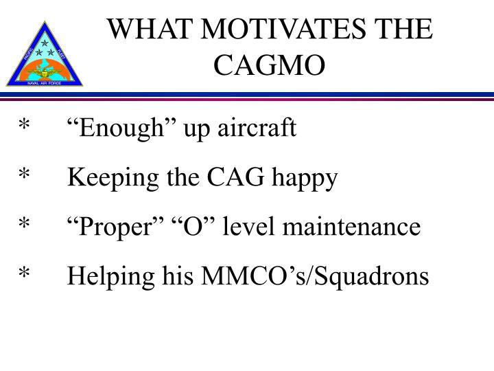WHAT MOTIVATES THE CAGMO