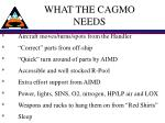 what the cagmo needs