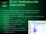 results purification of the target protein