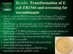 results transformation of e coli er2566 and screening for recombinants