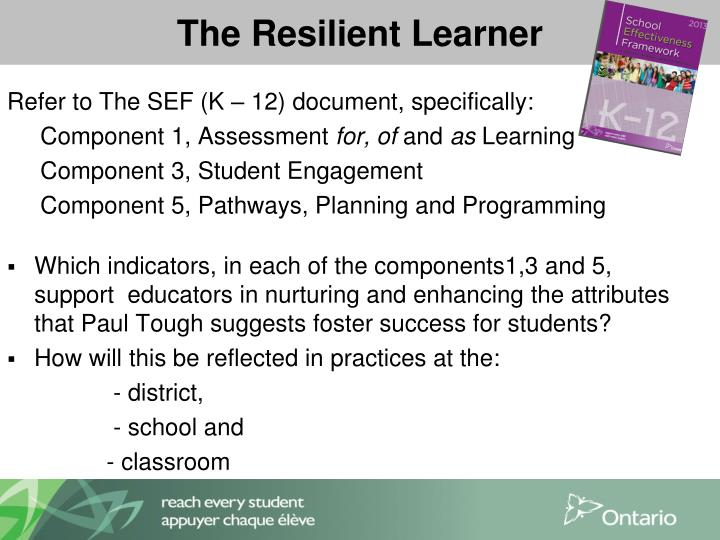 The Resilient Learner