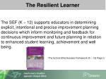 the resilient learner1