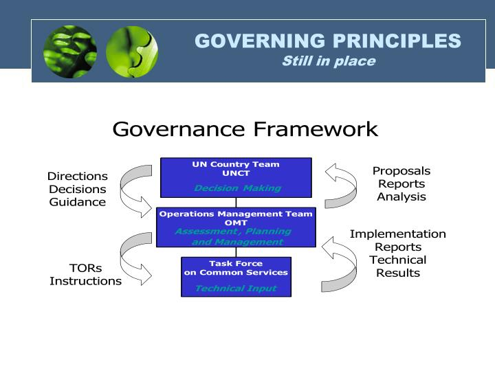 GOVERNING PRINCIPLES