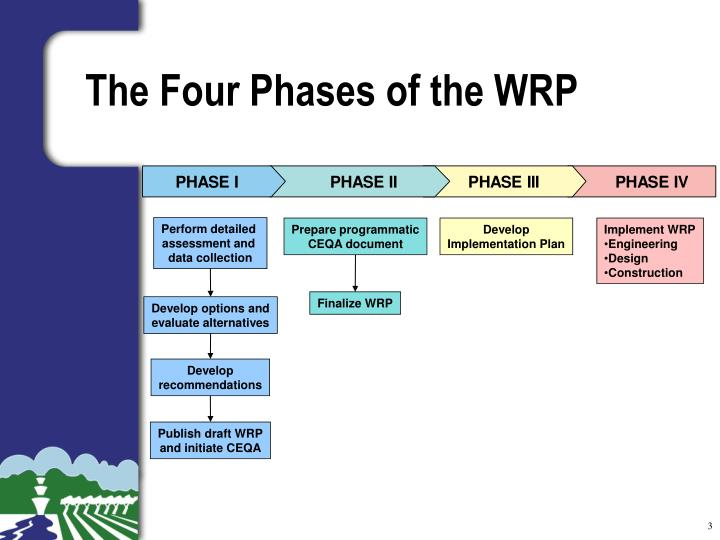 The four phases of the wrp