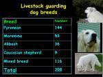 livestock guarding dog breeds