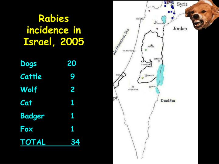 Rabies incidence in Israel,