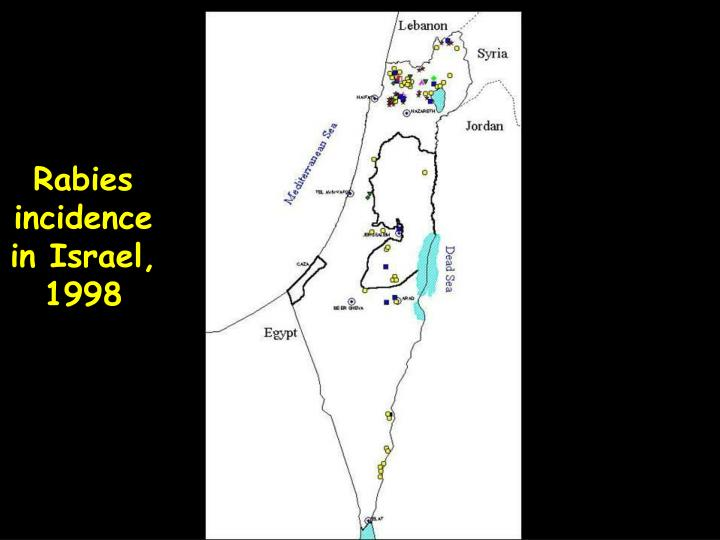 Rabies incidence in Israel, 1998