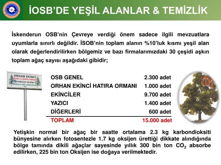İOSB'DE YEŞİL ALANLAR & TEMİZLİK