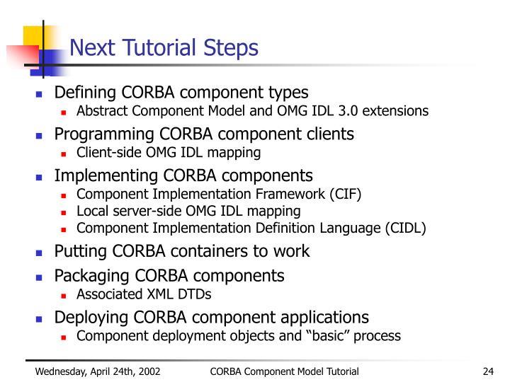 Next Tutorial Steps
