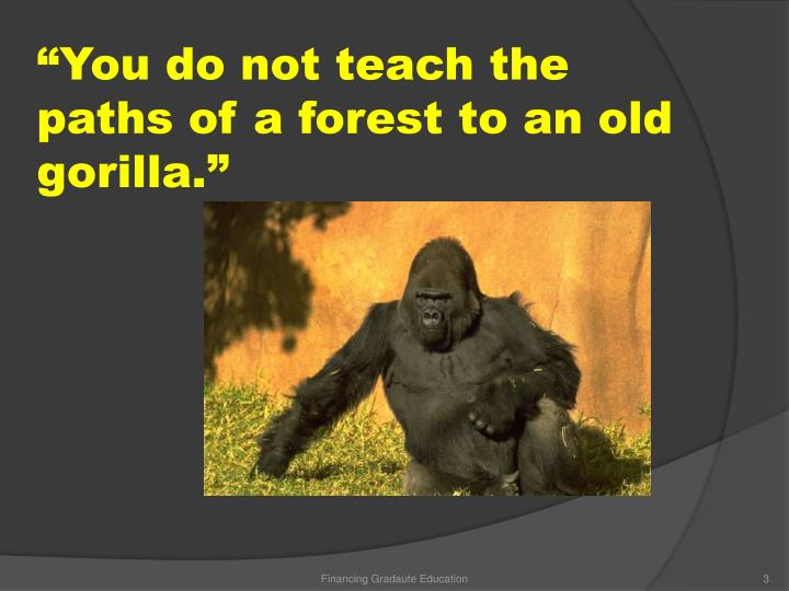 You do not teach the paths of a forest to an old gorilla