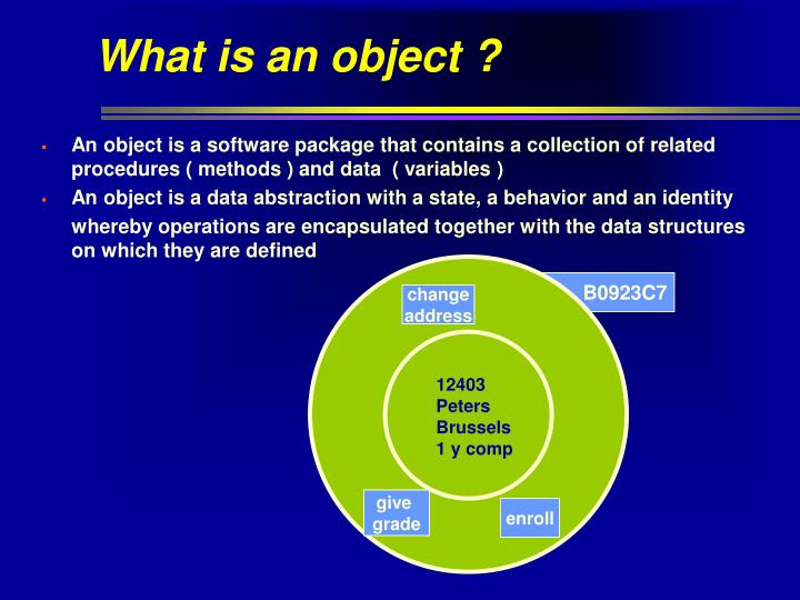 What is an object ?