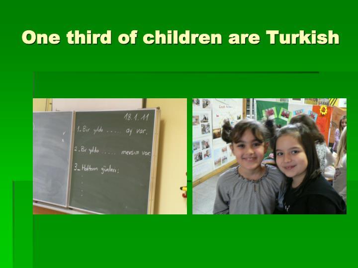 One third of children are Turkish
