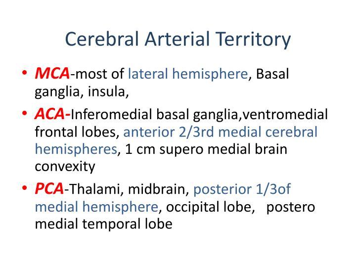 Cerebral Arterial Territory
