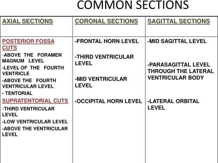 COMMON SECTIONS