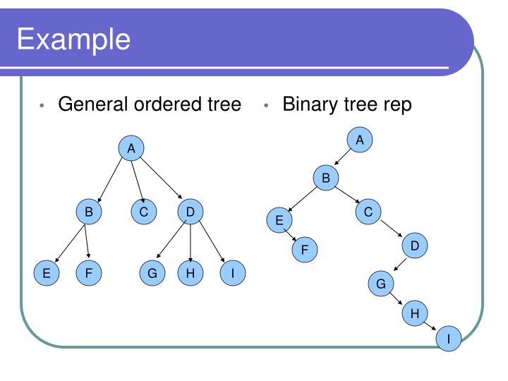 General ordered tree