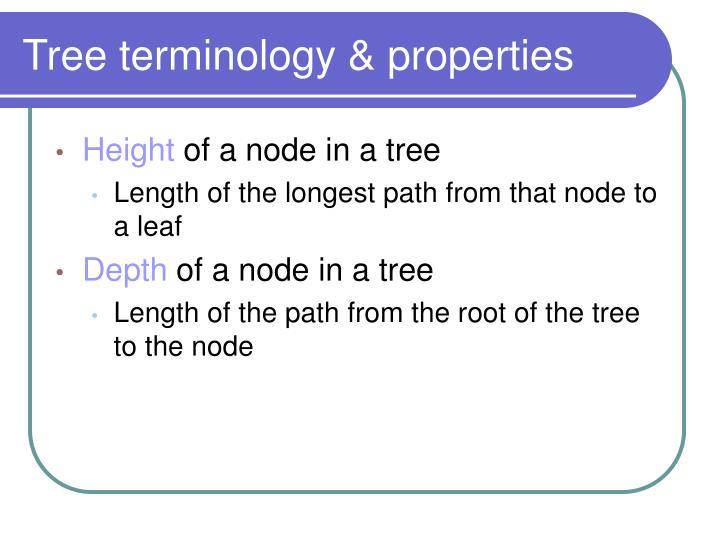 Tree terminology & properties