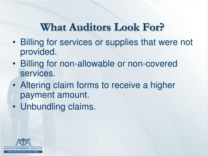 What Auditors Look For?