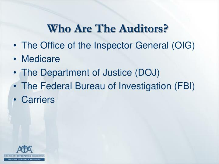 Who Are The Auditors?