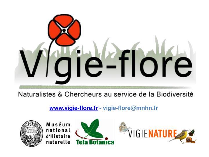 www.vigie-flore.fr