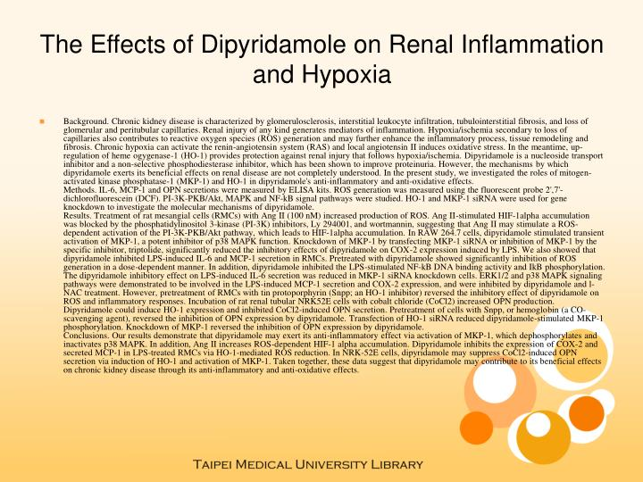 The Effects of Dipyridamole on Renal Inflammation and Hypoxia