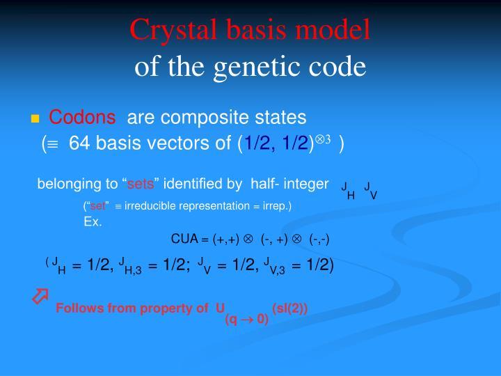 Crystal basis model
