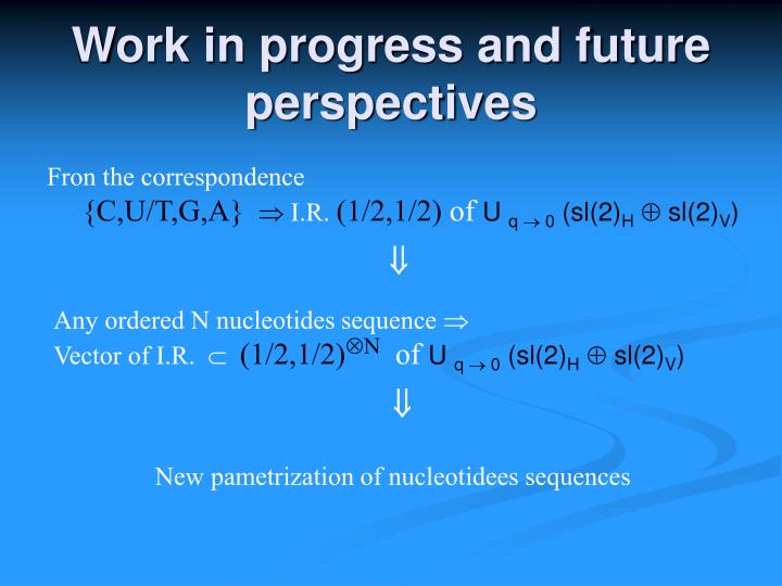 Work in progress and future perspectives