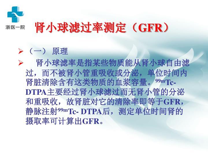 肾小球滤过率测定(