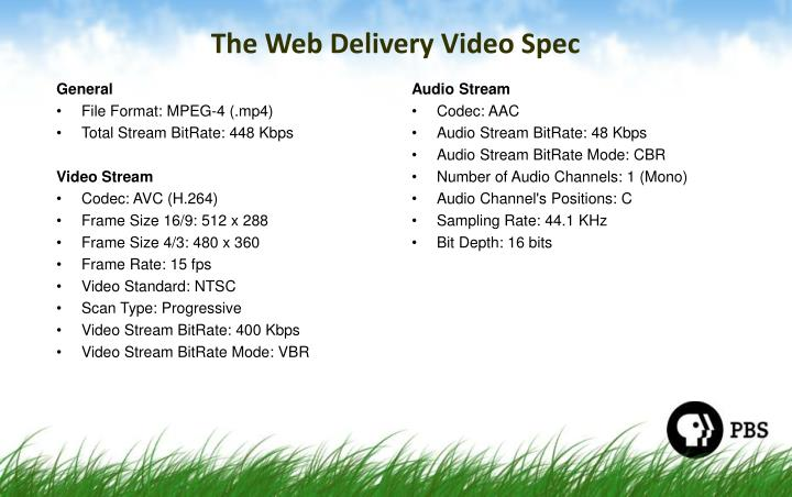 The Web Delivery Video Spec