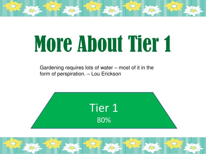 More About Tier 1