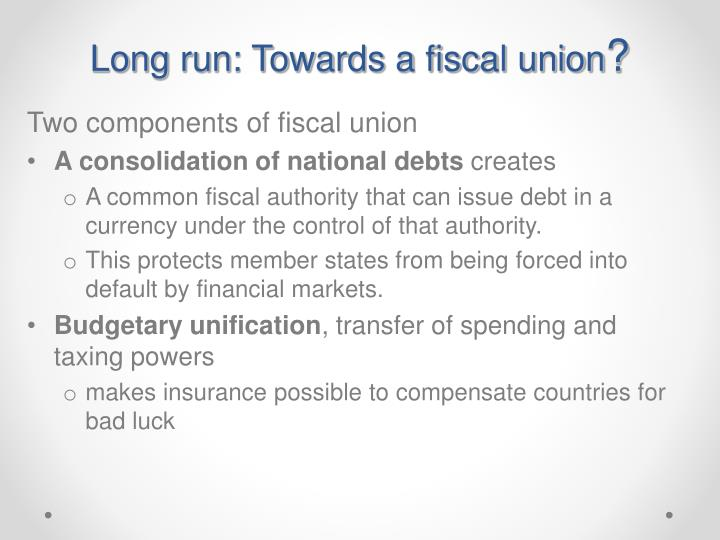 Long run: Towards a fiscal union