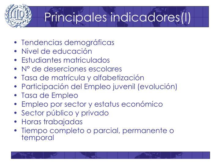 Principales indicadores(I)