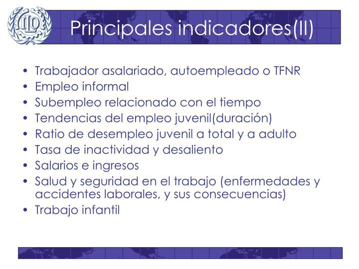 Principales indicadores(II)