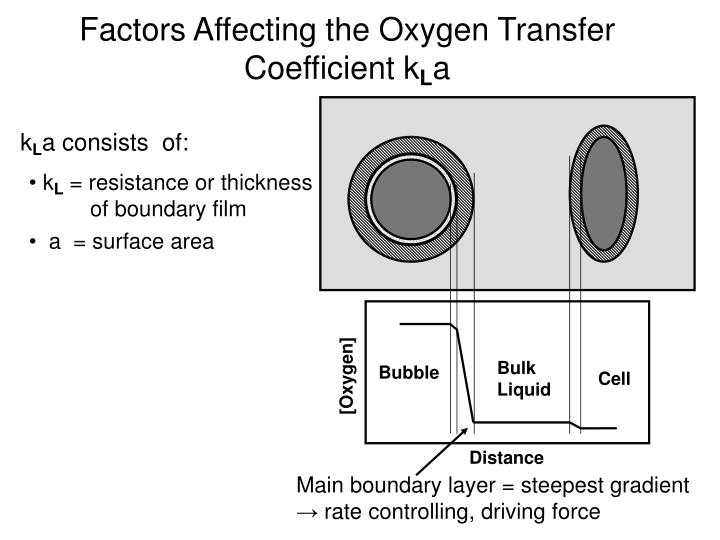 Factors Affecting the Oxygen Transfer Coefficient k