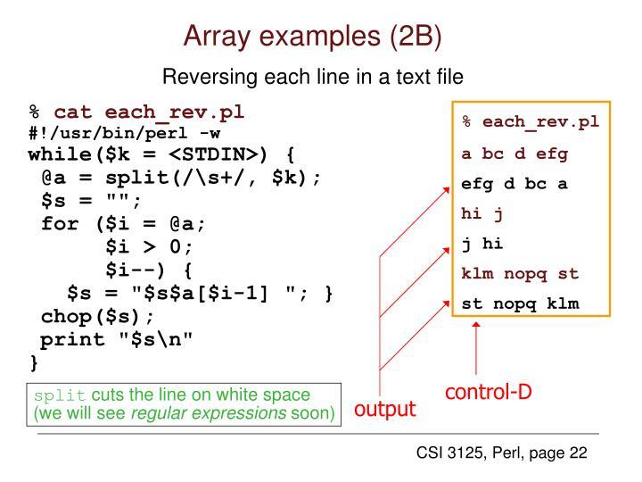 Array examples (2B)