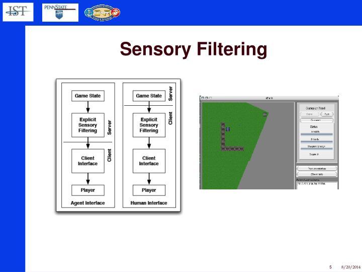Sensory Filtering