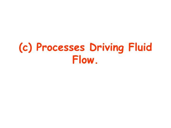 (c) Processes Driving Fluid Flow.
