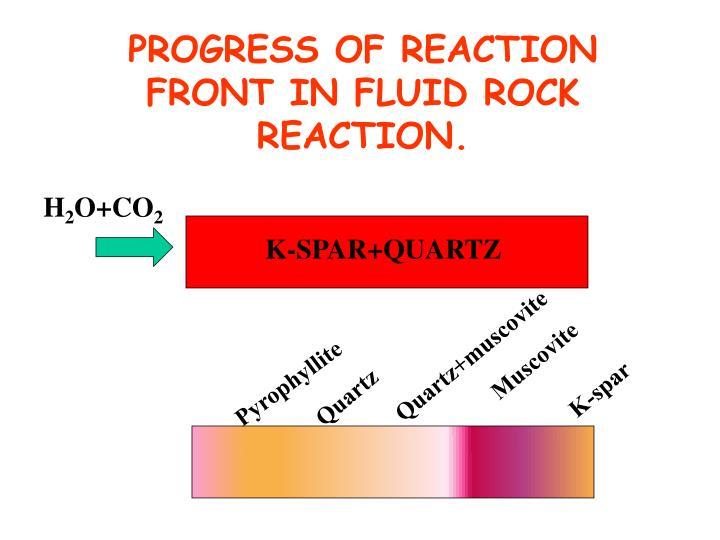 PROGRESS OF REACTION FRONT IN FLUID ROCK REACTION.