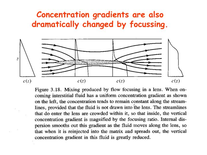 Concentration gradients are also dramatically changed by focussing.
