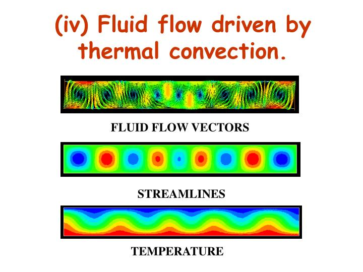 (iv) Fluid flow driven by thermal convection.