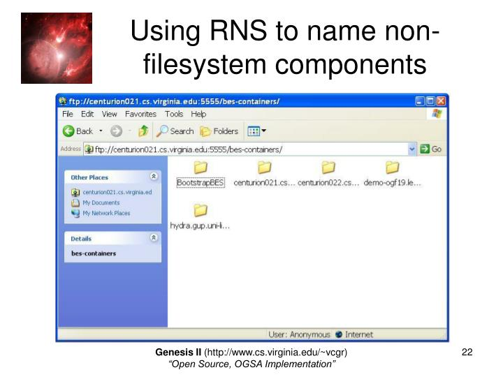 Using RNS to name non-filesystem components