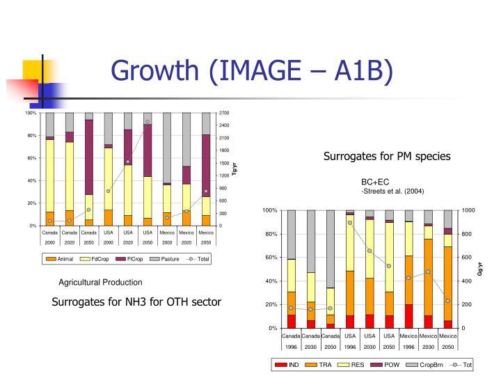 Growth (IMAGE – A1B)