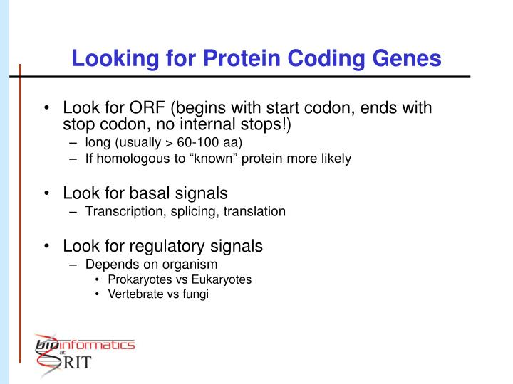 Looking for Protein Coding Genes